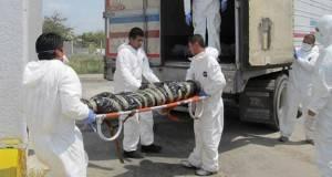 Amnistía Internacional criticó el pobre avance en las investigaciones por la masacre en San Fernando, Tamaulipas.