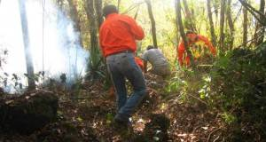 Los incendios forestales en el municipio de Jaumave rebasan ya una superficie de más de 40 hectáreas.
