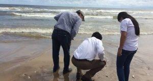La Coepris sigue de cerca la problemática de marea roja en la playa