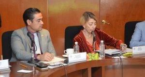 Lydia Madero García, se reunió con legisladores de la Comisión de Salud de la Cámara de Diputados.