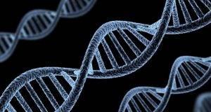 con este estudio los científicos esperan comprender mejor cómo se desarrolla la metástasis.