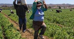 4 Portada Deportaciones